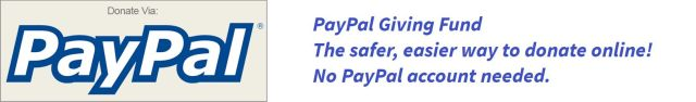 PayPal :: The safer, easier way to donate online!